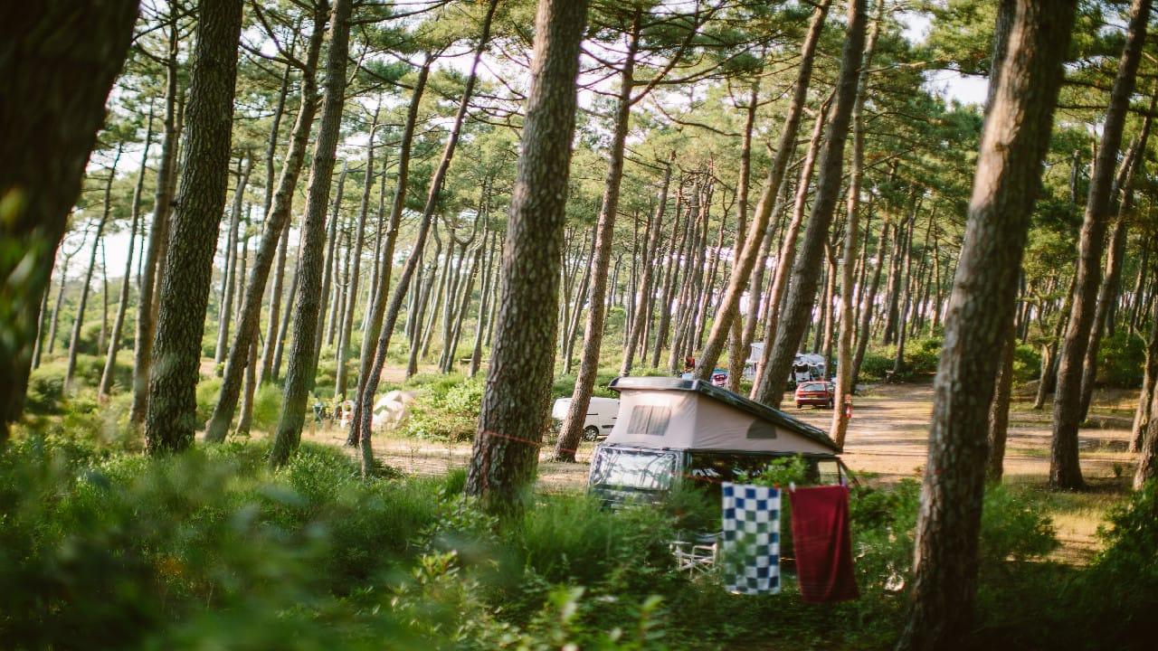 FKK-Camping Frankreich: Die schönsten Plätze für