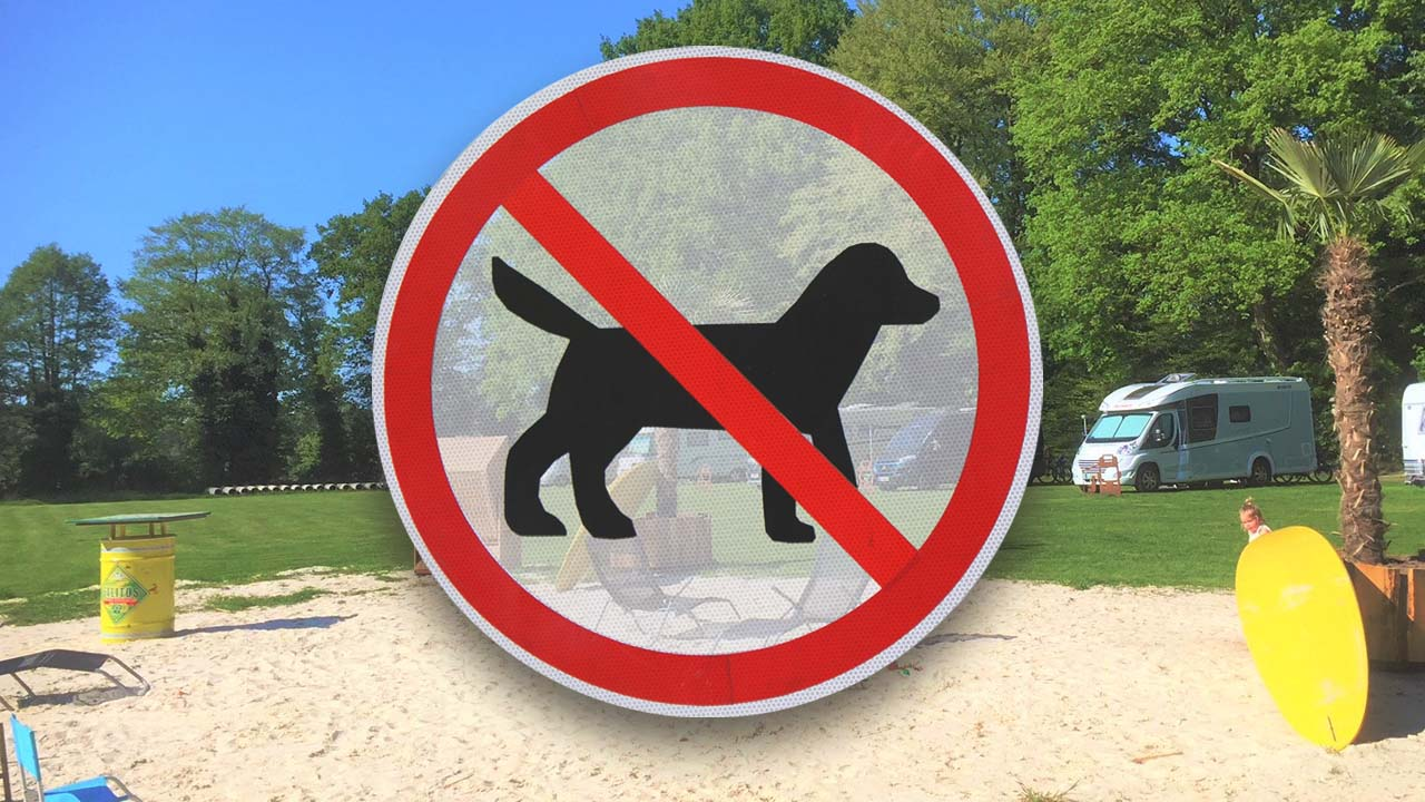 Hundeverbot In Deutschland